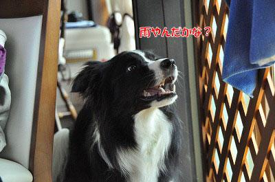 20120504-wan18.jpg