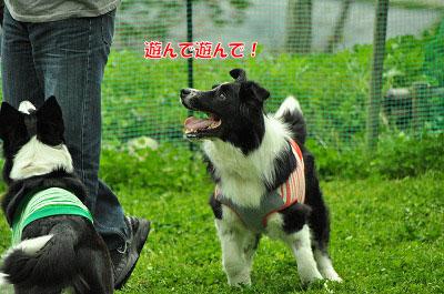 20120504-wan19.jpg