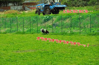 20120504-wan22.jpg