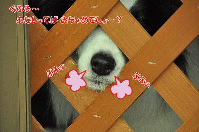 20120504-wan24.jpg