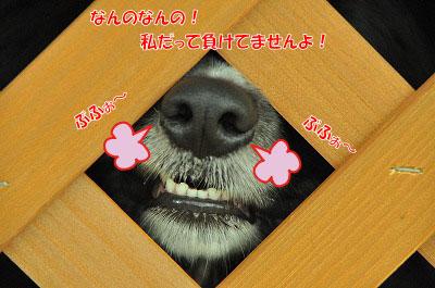 20120504-wan25.jpg