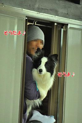 20120504-wan26.jpg