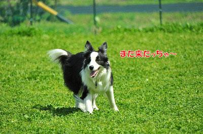 20120505-wan01.jpg