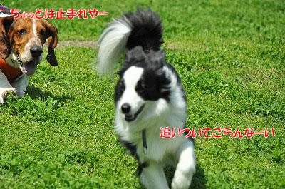 20120505-wan02.jpg