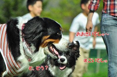 20120505-wan04.jpg