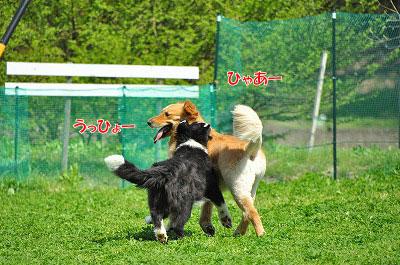 20120505-wan05.jpg