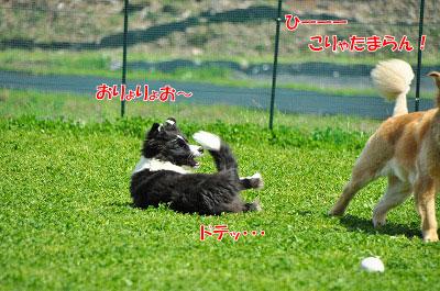 20120505-wan06.jpg