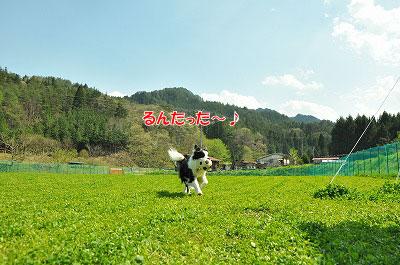 20120505-wan10.jpg
