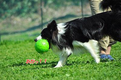 20120505-wan12.jpg