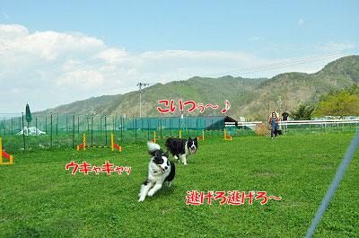 20120505-wan13.jpg