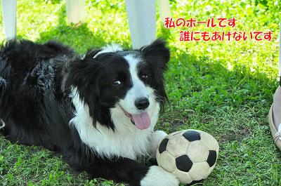 20120505-wan14.jpg