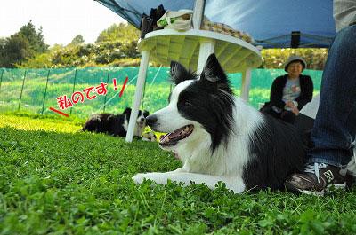 20120505-wan15.jpg