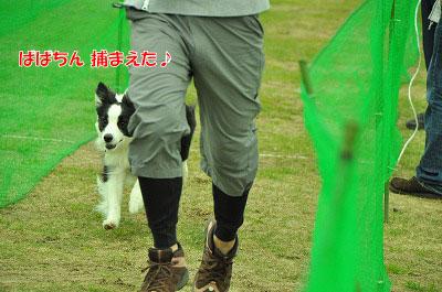 20120512-run05.jpg