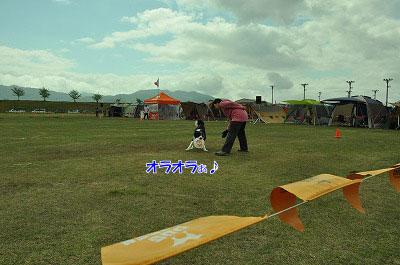 20120512-win04.jpg