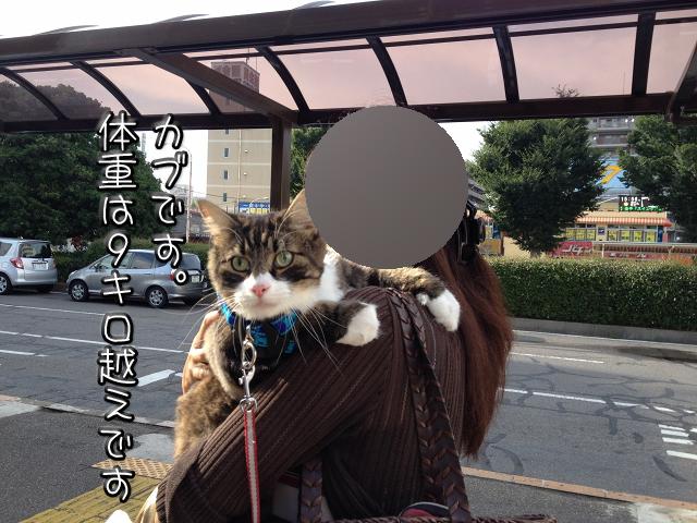 20120820141623ea2.jpg