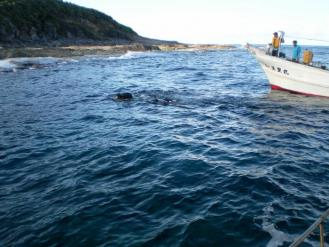 漁業 2012_0819_094158-SANY0151_convert_20120829160902