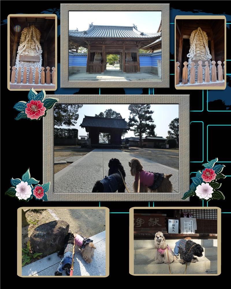本山寺301