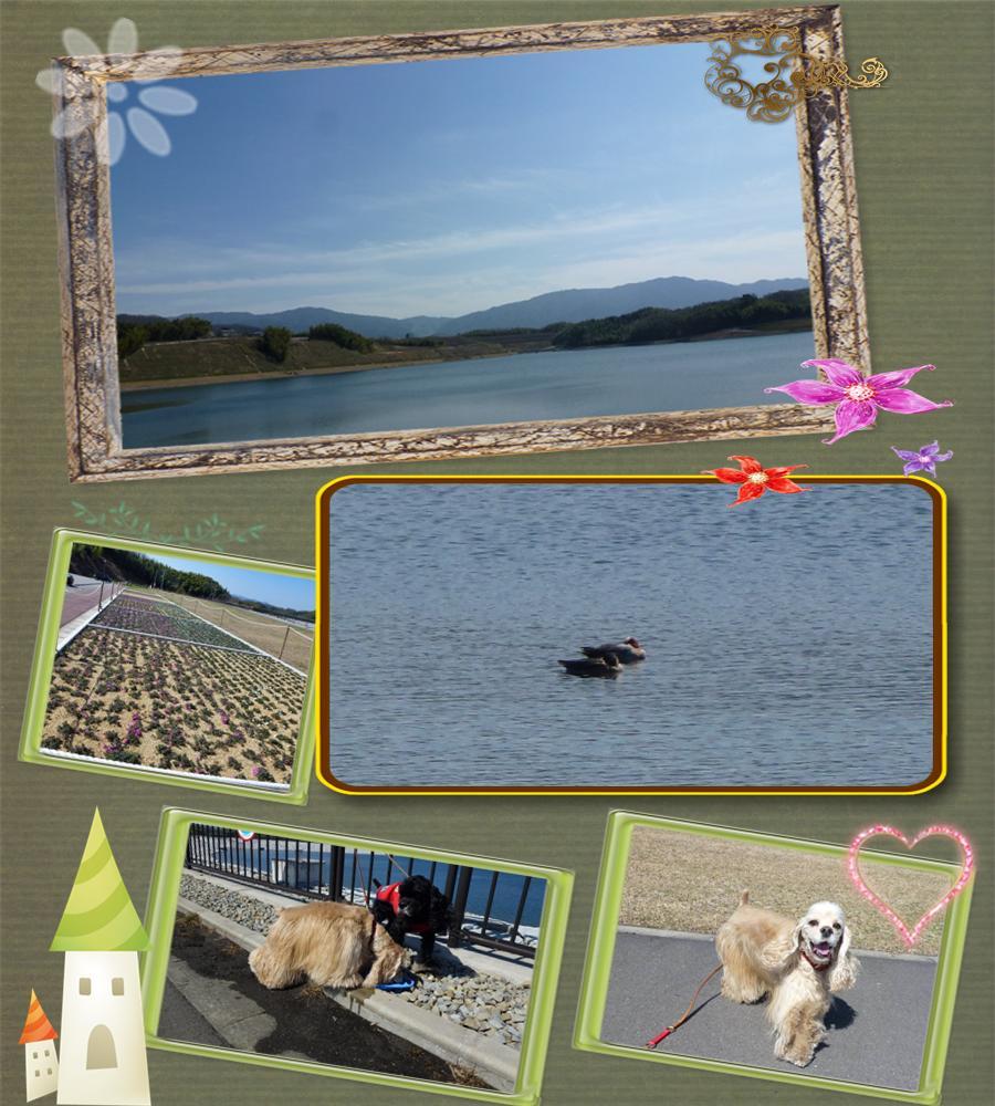 宝山湖2001