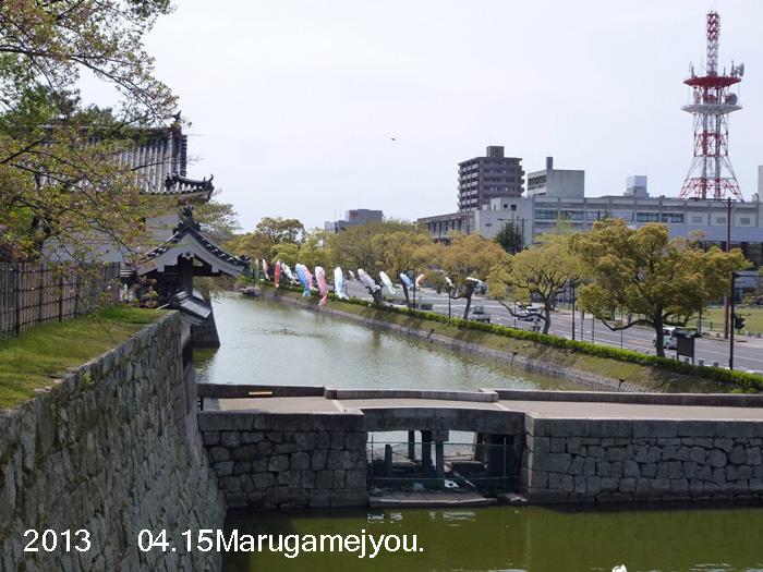 P1160894.jpg