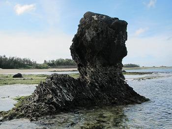 amamiooshima132.jpg