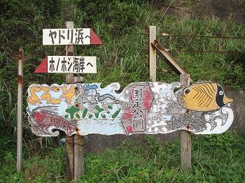 amamiooshima194.jpg