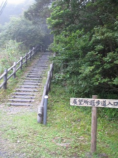 amamiooshima217.jpg