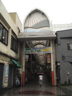 amamiooshima266.jpg