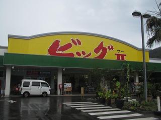 amamiooshima273.jpg