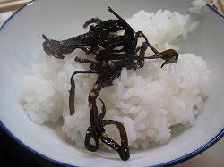 asagaya-daihachi47.jpg
