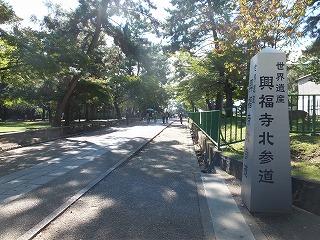 nara-kohfukuji6.jpg