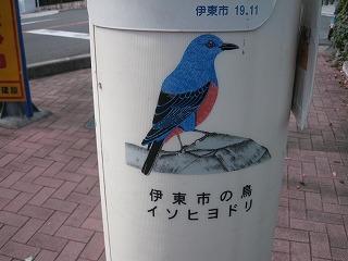 sizuoka-ito101.jpg