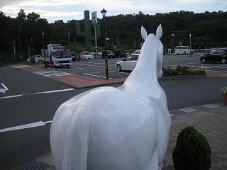 sizuoka-ito112.jpg