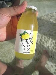 sizuoka-ito127.jpg