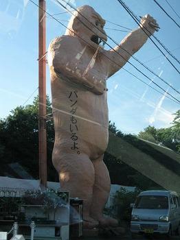 sizuoka-ito84.jpg