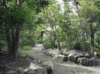 sizuoka-ito88.jpg