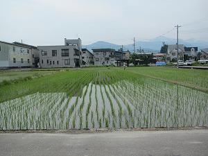 uonuma-street105-5.jpg