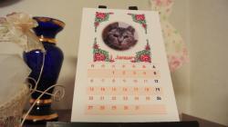 2013ニャンズカレンダー②2012.12.28