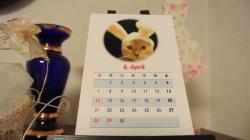 2013ニャンズカレンダー③2012.12.28