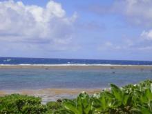 ひかり輝く自然界からのおくりもの-海