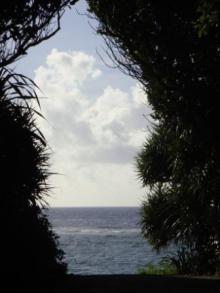 ひかり輝く自然界からのおくりもの-海4