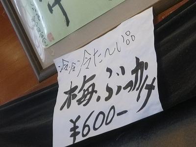 P1000573.jpg