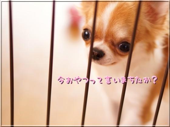 001_20120731125119.jpg