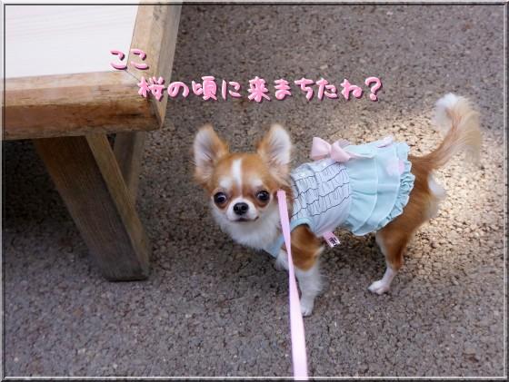 001_20121005204303.jpg