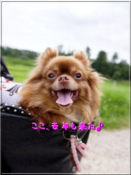 002_20120722231911.jpg