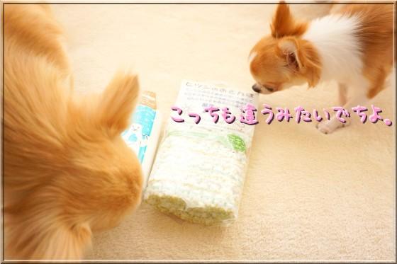 006_20120822120044.jpg