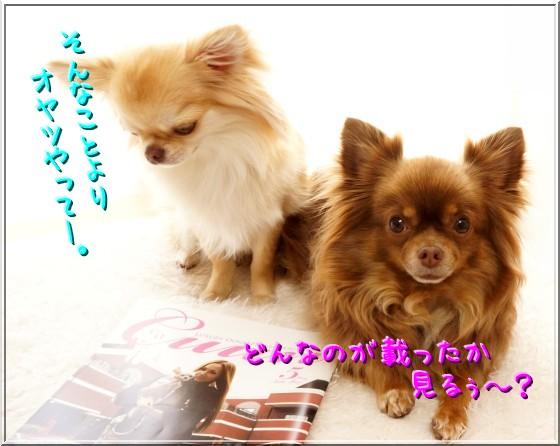 008_20120525201709.jpg