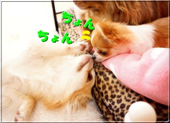 020_20120513110707.jpg