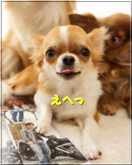 020_20120525201838.jpg