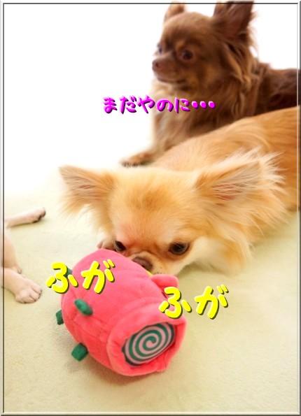 041-1_20120721213603.jpg