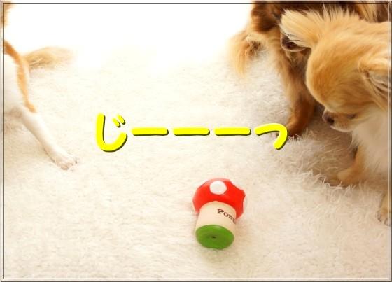 045-1_20120525202018.jpg